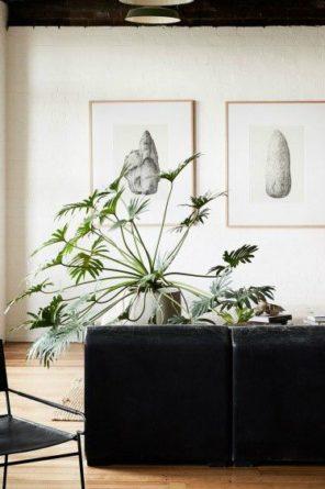 Living Room Photo Cailtin Mills